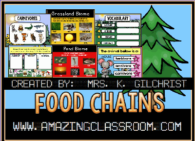 Food Chains and Biomes Flipchart